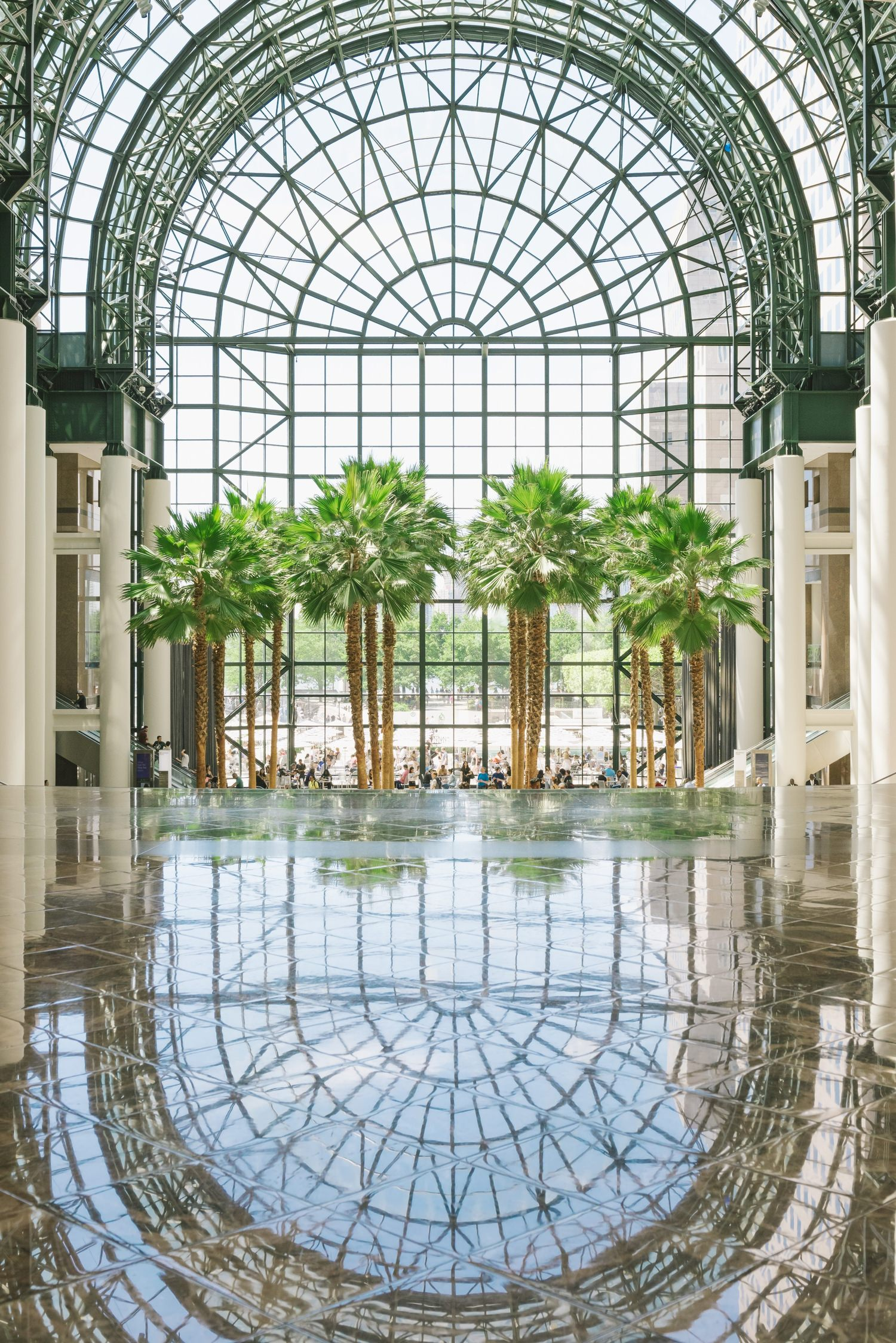 An indoor pool that is next to a row of palm trees that is under a arched glass roof.