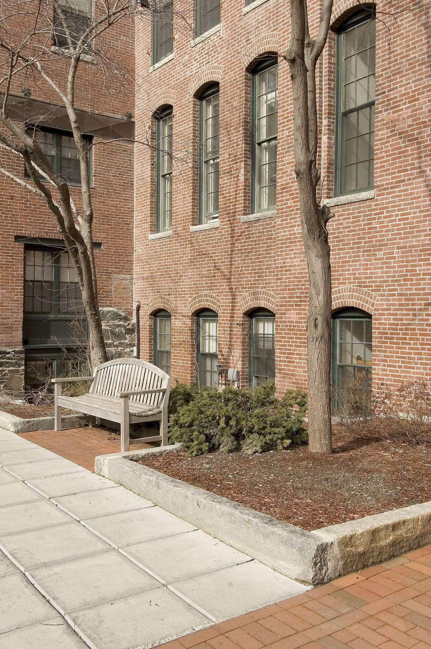 Trees that are planted next to a bench that is in front of a brick building in a courtyard area.