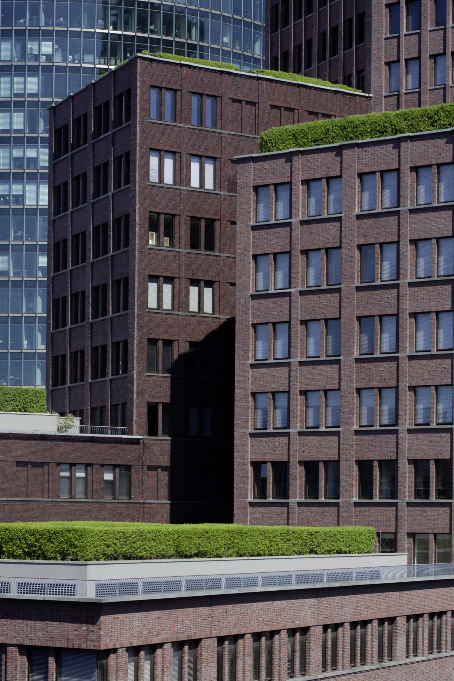 A view of a rooftop of a building that have green grass and plants on it and windows looking out to it.