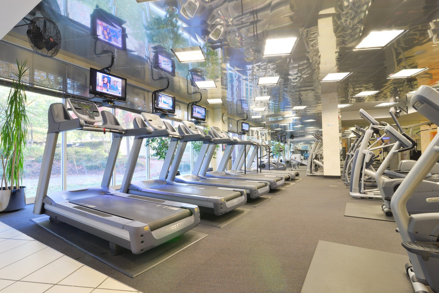 A view of a gym with multiple rows of treadmills.