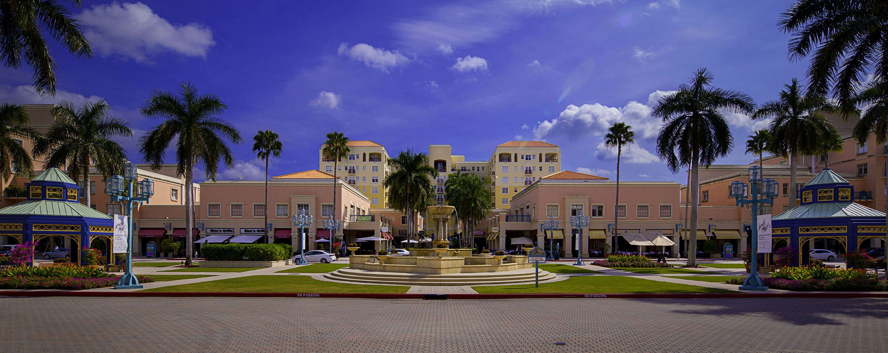 Green grass and palm trees decorate the lawn of a modern shopping center or strip mall.