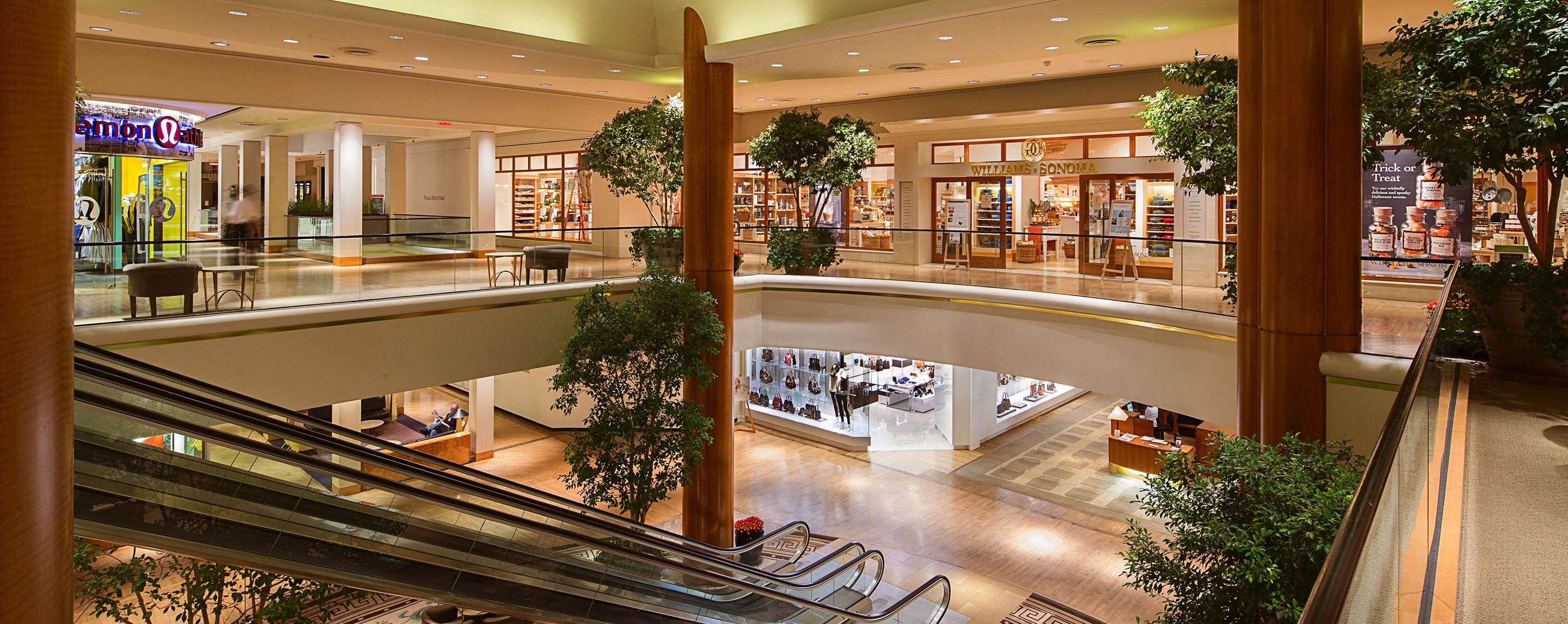 Small trees and plants decorate the second floor of a shopping center with an escalator.