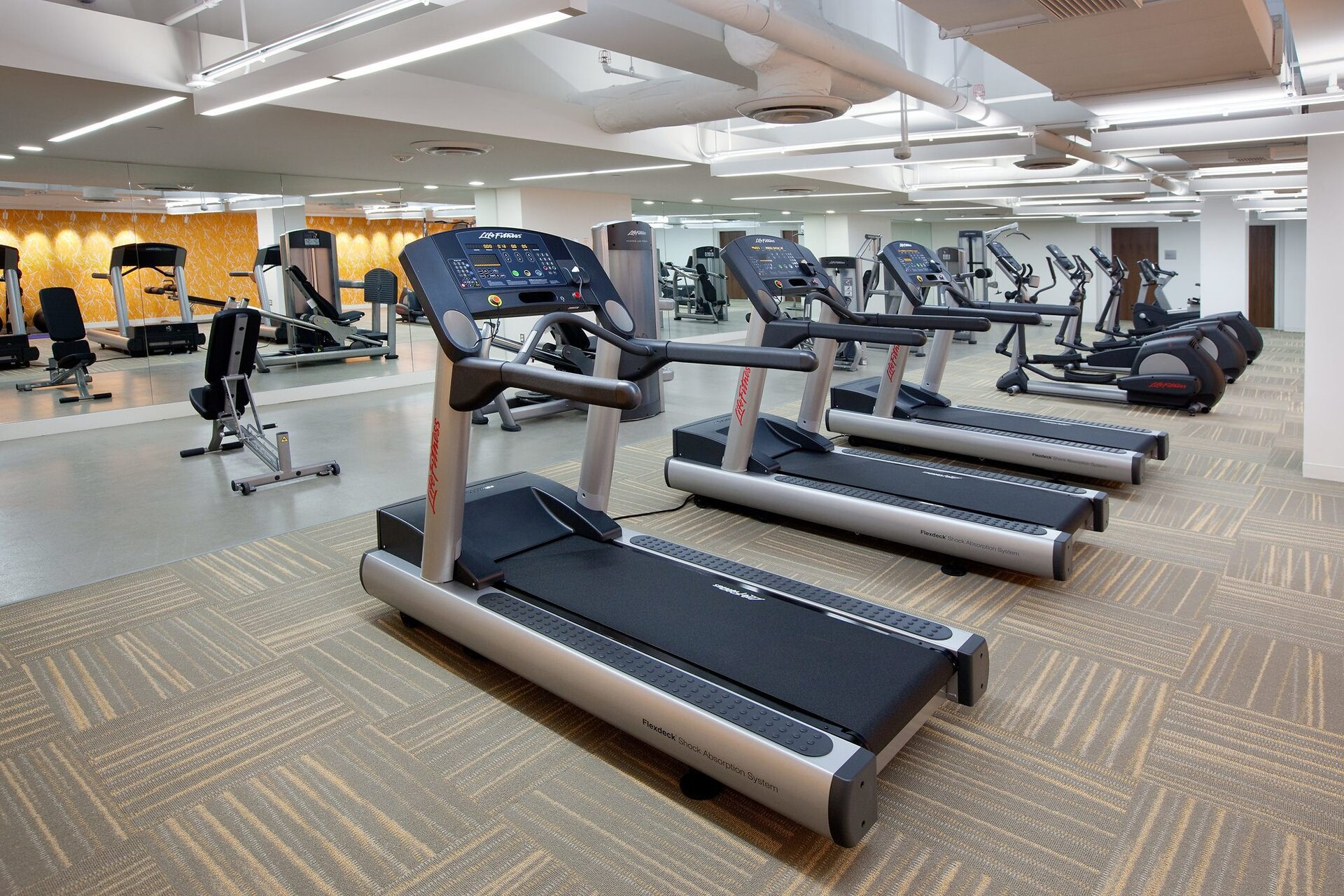A row of treadmills and other exercise equipment line up the floor of a large gym.
