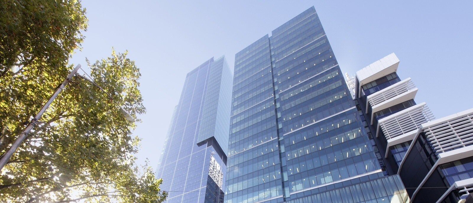 A low angle shot of trees next to tall buildings and a tower that are pointing to the sky.